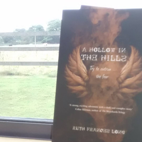 LibraryCows